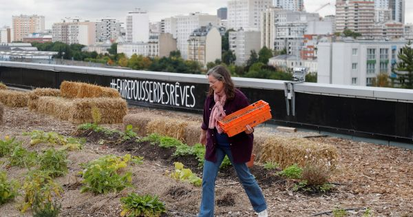 grow your own urban farming flourishes in coronavirus lockdowns Bangkok — (Thomson Reuters Foundation) - Coronavirus lockdowns are pushing more city dwellers to grow fruit and vegetables in their homes, providing a potentially lasting boost to urban farming, architects and food experts said this week.