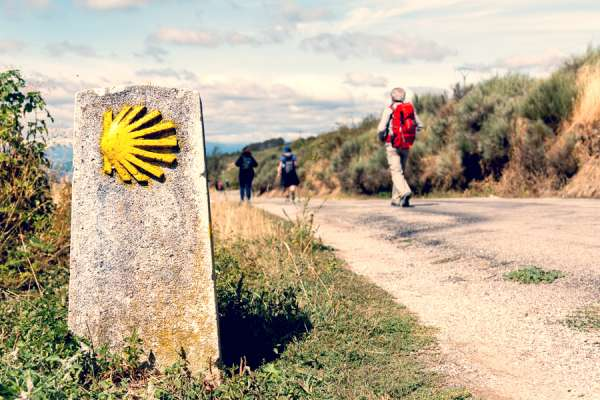 disabled teen encouraged by pope francis after walking camino de santiago Rome Newsroom, Jul 22, 2020 / 08:30 am (CNA).- A Spanish teenager with an intellectual disability received an encouraging letter from Pope Francis after walking the Camino de Santiago this month.