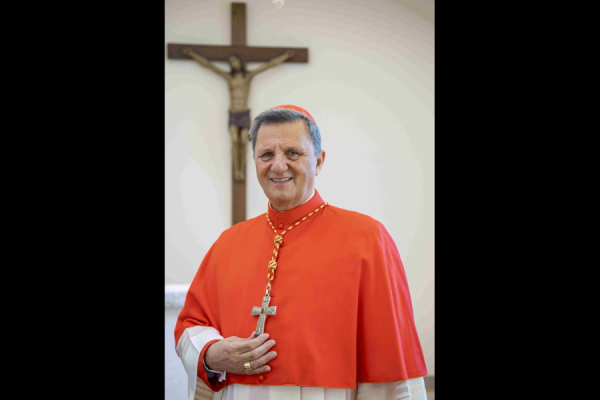 """cardinal grech to irish bishops a synodal process promises an ecclesial springtime CNA Staff, Mar 4, 2021 / 08:30 am (CNA).- Cardinal Mario Grech told Irish bishops that embarking on a """"synodal process"""" could lead to an """"ecclesial springtime."""""""