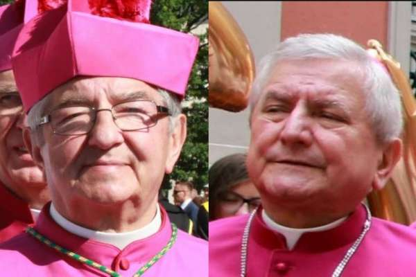 vatican sanctions two polish bishops after vos estis investigations Rome Newsroom, Mar 29, 2021 / 07:30 am (CNA).- The apostolic nunciature in Poland announced Monday that the Vatican has sanctioned two Polish bishops at the conclusion of canonical inquiries into accusations they were negligent in their handling of sexual abuse of minors by clergy.
