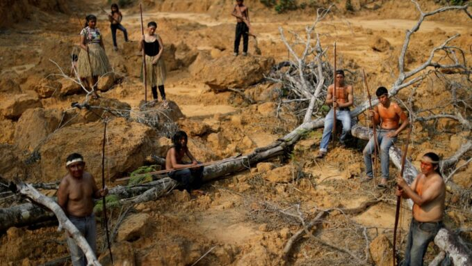 in amazonia 1 indigenous rights defender is killed every 2 days By Robin Gomes