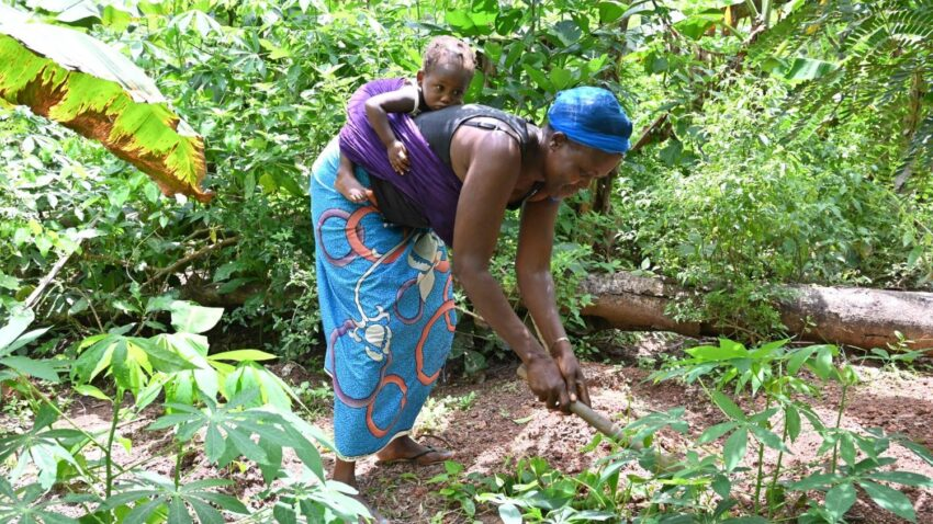 caritas calls for fairer food systems that include women and local farmers By Robin Gomes